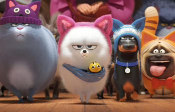 Sorties à la maison : The Secret Life of Pets 2