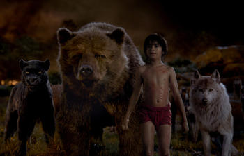 Sorties DVD : The Jungle Book