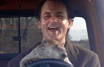 10 choses à se remémorer du classique Groundhog Day