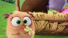 Promo pour Pâques avec les Hatchings