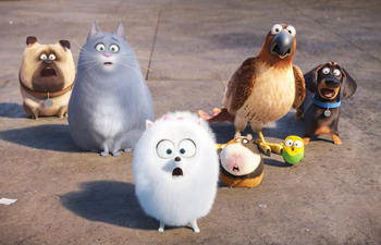 Nouveautés : The Secret Life of Pets