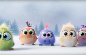 Les Hatchlings de The Angry Birds Movie vous souhaitent Joyeux Noël!