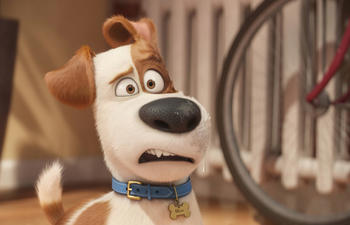 Box-office nord-américain : The Secret Life of Pets devance Ghostbusters