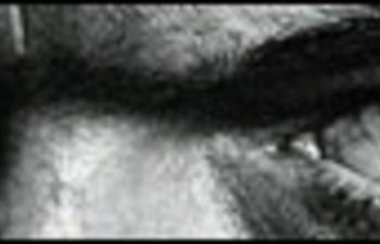 Affiche de Mesrine - L'instinct de mort