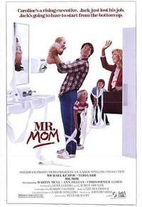 Monsieur Maman - Le roi du foyer
